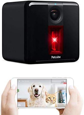 petcube-2017-item-play-smart-pet-2