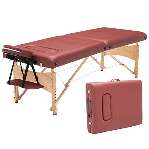 HO-TBO Folding Massage Table 2 Section Portable Massage Table Lightweight Folding Facial SPA Bed Salon Couch Bed Professional Beauty Tattoo Therapy Table Portable, Lightweight And Adjustable