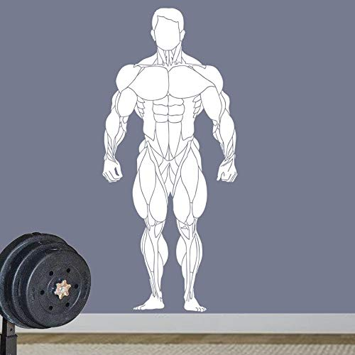 zzlfn3lv Gym Sticker Fitness Decal Body-Building Posters Vinyl Wall Decals Pegatina Quadro Parede Decor Mural Gym Sticker36*80cm