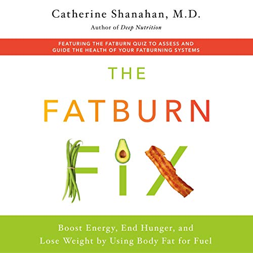 Page de couverture de The Fatburn Fix