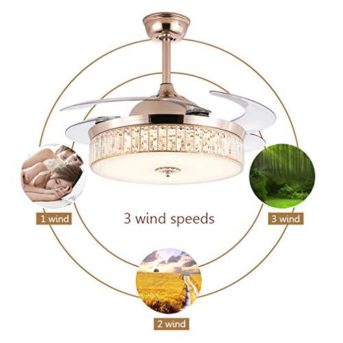 CDDQ Deckenventilator mit Beleuchtung,Kristalldesign,Nordischer Stil,mit Sommer- oder Winterbetrieb,90cm/107cm/132cm,Fernbedienung