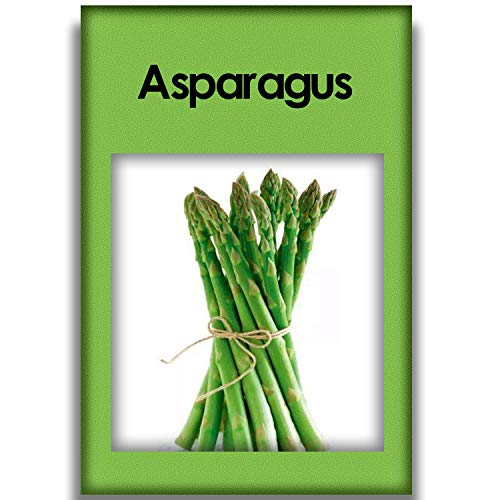 100 Asparagus Seeds Organic Heirloom Asparagus Seeds That Can be Used in Home Gardens to Survive in Any Soil Environment