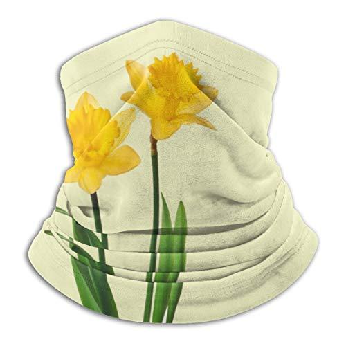 ghkfgkfgk Gelbe Frühlings-Narzissen-Narzissen-Schablonen-Ski-Masken-kaltes Wetter-Gesichtsmasken-Hals-Wärmer-Vlies-Hauben-Winter-Hüte