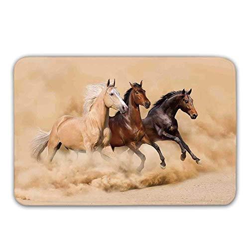 LIS HOME Tappetino Antiscivolo per Cavalli, Corsa a Tre Cavalli nella Tempesta del Deserto Mitico Mistico messaggero Animali Habitat Stampa zerbino per Tappetino da Bagno per Porta d'ingresso