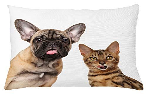 ABAKUHAUS Bulldog Sierkussensloop, Kat en Hond Geschokt Staring, Decoratieve Vierkante Hoes voor Accent Kussen, 65 cm x 40 cm, Wit en Multicolor