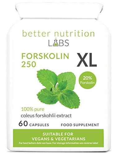 Forskolin XL -Ziernessel Forskohlii (20% Forskolin) Extrakt - Nahrungsergänzung -Von Better Nutrition Labs - 60 Kapseln