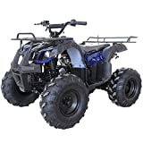 X-PRO ATV for Sale 125cc ATV Quad Youth 4 wheeler ATVs Adults ATV Four Wheelers (Spider Blue)