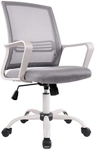 Best Smug Computer Desk Chair with Armrests