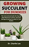 Growing Succulent For Dummies: The...