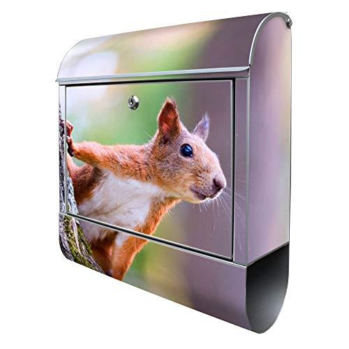 Banjado Design Briefkasten mit Motiv Eichhörnchen | Stahl pulverbeschichtet mit Zeitungsrolle | Größe 38x47x14cm, 2 Schlüssel, A4 Einwurf, inkl. Montagematerial