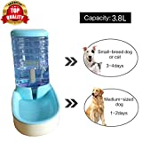 Pet Water Fountains Review and Comparison