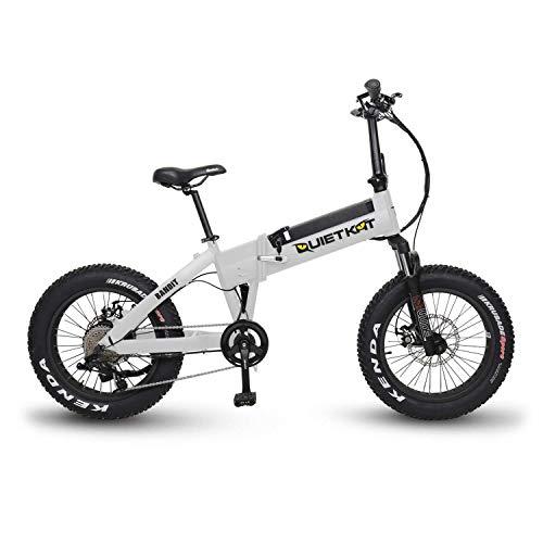 QuietKat 2019 Bandit 750W Electric Bike for Backcountry