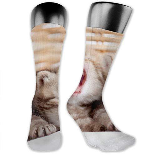 JONINOT 2 paquetes de calcetines deportivos ligeros y cómodos 40CM novedad divertidos adorables gatitos pequeños cesta de mimbre medias largas