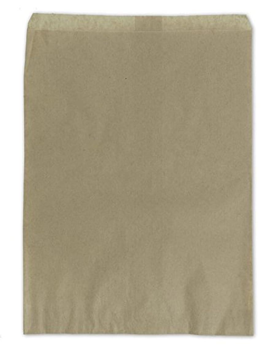 Gift Bags Kraft 11
