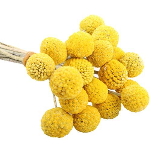 VOSAREA 30pcs Tallos Flores secas Rama Bolas de Billy Amarillas para decoración de Vacaciones en el hogar DIY