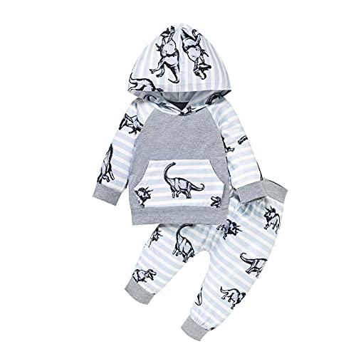 KameyouForever 0-24 meses bebé niños dinosaurios trajes de manga larga con capucha Tops+pantalones a rayas Set 2pc ropa de otoño conjuntos para niños pequeños, gris, 24 meses