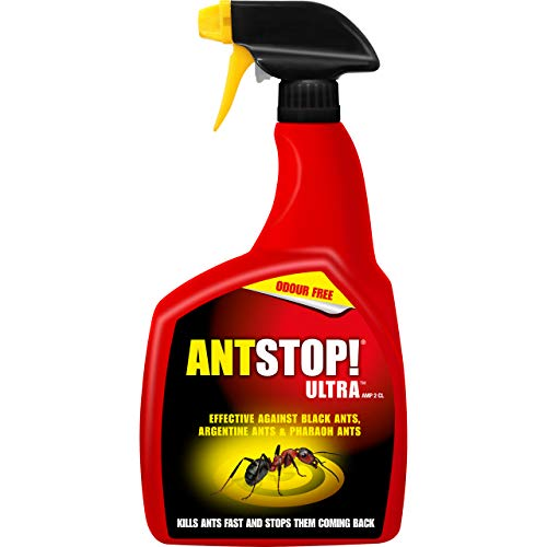 Home Defence 119599 Ant Stop Ultra Gun 800ml, Cl