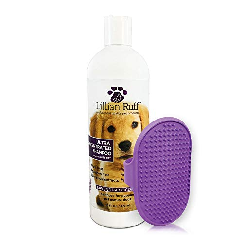 Lillian Ruff Professional Dog Shampoo – Concentrated Dog Shampoo with Aloe – Tear Free Lavender Coconut Scent – Soothe & Cleanse Normal to Dry Itchy Sensitive Skin – Made in USA (16oz with Bath Brush)