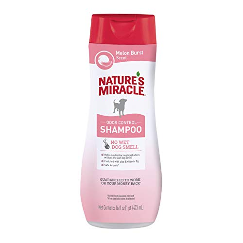 Nature's Miracle Odor Control Shampoo for Dogs, 16 Ounces, Melon Burst Scent