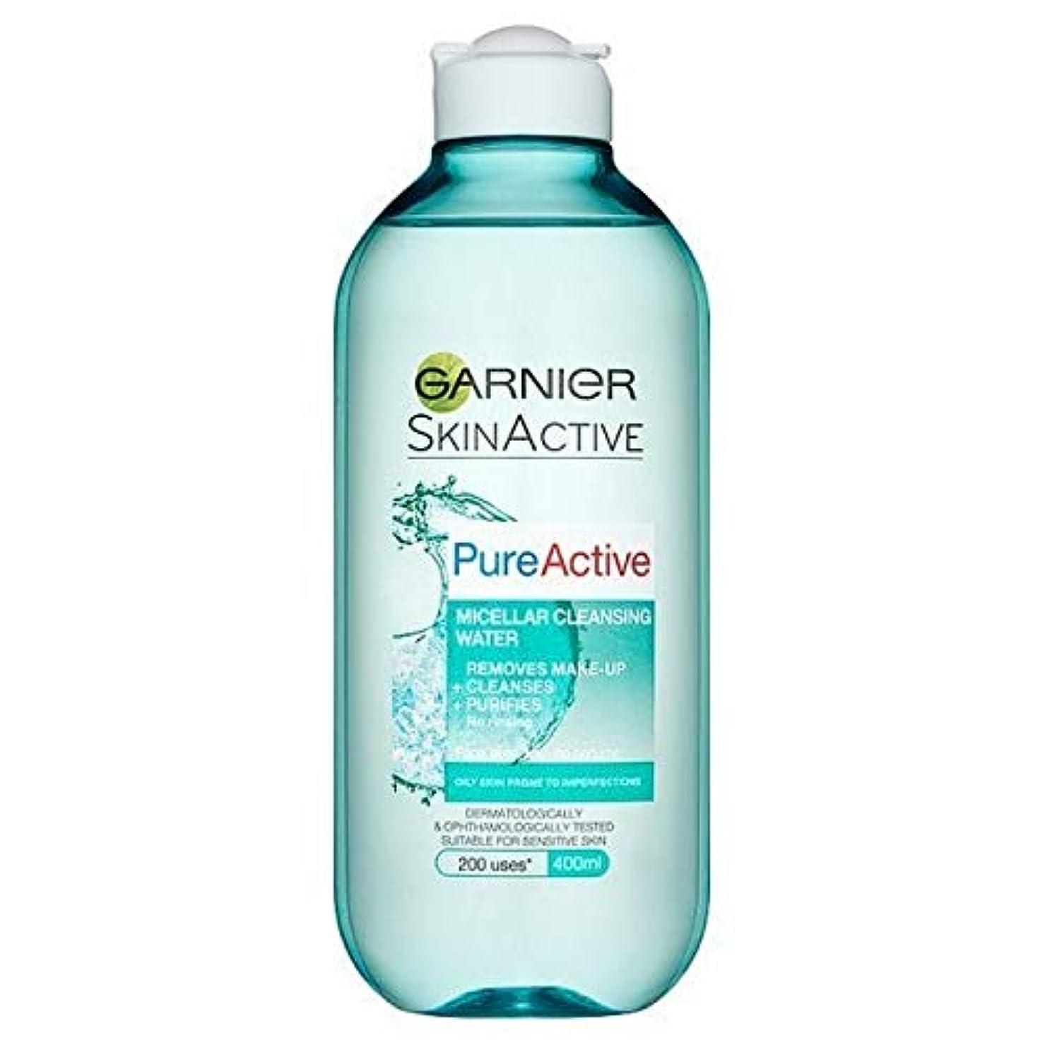 追い払う動物園チョーク[Garnier ] 純粋な活性ミセル水脂性肌用400ミリリットル - Pure Active Micellar Water Oily Skin 400ml [並行輸入品]