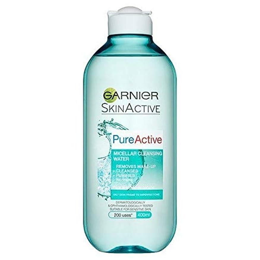 ヒープ凝視手を差し伸べる[Garnier ] 純粋な活性ミセル水脂性肌用400ミリリットル - Pure Active Micellar Water Oily Skin 400ml [並行輸入品]