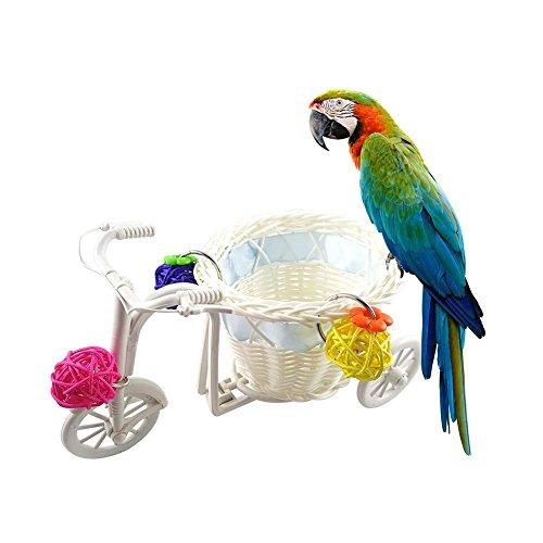 Li-ly Mini vélo Chariot Caddie Oiseau Perroquet Jouet Pet Intelligence Boule de rotin de Croissance d'intelligence, Couleur aléatoire Durable et Pratique