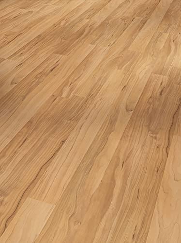 Parador Laminat Basic 400 - Apfel Bernstein - Hochwertiger Laminatboden mit Klick-Verbindung - Set mit 10 Dielen im Paket = 2.49 m²