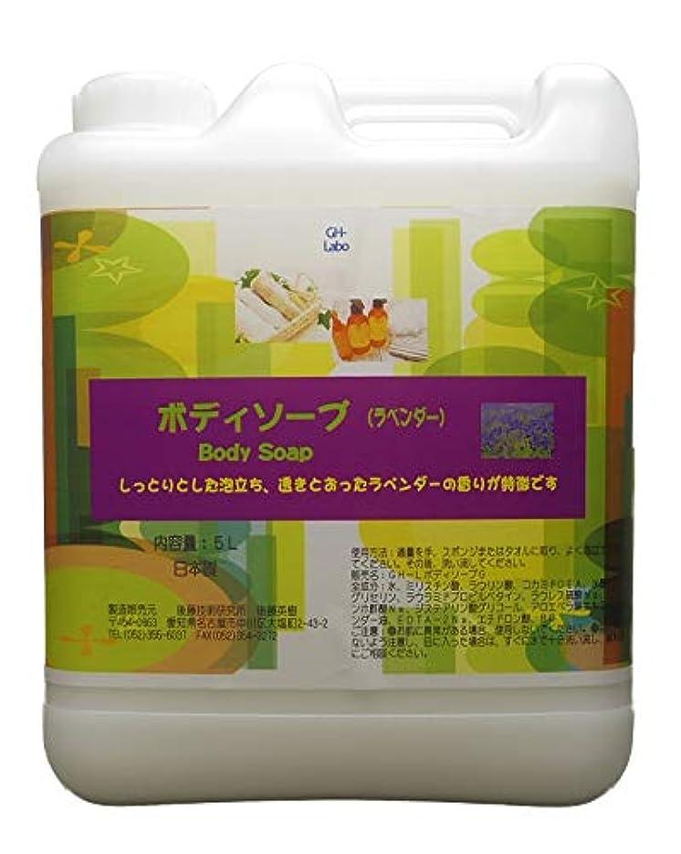 建設ピッチ許容GH-Labo 業務用ボディソープ ラベンダーの香り 5L