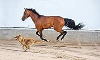 1000ピース木製ジグソーパズル走っている馬と犬大人子供のゲームおもちゃのストレスリリーフパズル