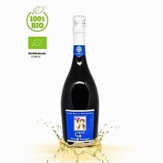 Il-Cielo-di-Montemaggio-Schaumwein-Cuvee-Brut-Extra-Trocken-Sekt-100-Chardonnay-Luxuriser-Edler-Bio-Wein-aus-Italien-Fattoria-di-Montemaggio-075L