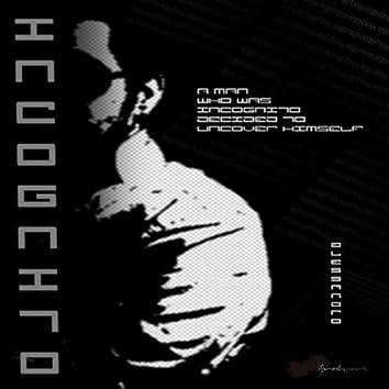 Incognito The Album