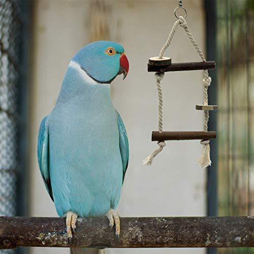 EBaokuup Bird Parrot Perch Stand Set - 10 PCS Parakeet Bird Parrot Natural Wood Fork Perch Rod Stand for Pet Budgies Cockatiels Conure Lovebirds