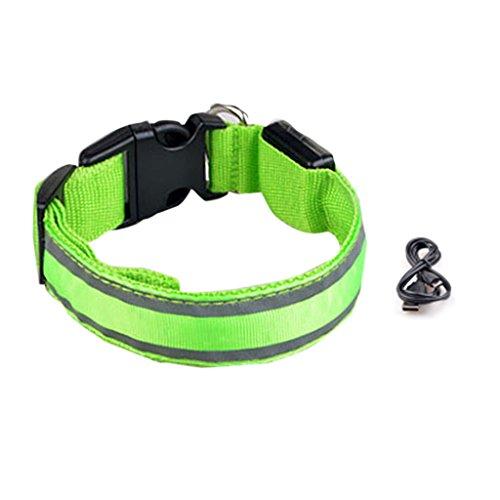 KHFFH hondenriem voor huisdieren, USB-kabel, oplaadbaar met dubbele reflector
