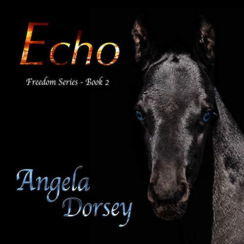 Echo Audiobook By Angela Dorsey cover art