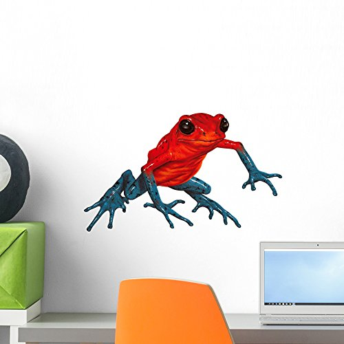 Poison-dart Frog Wall Decal by Wallmonkeys Peel and Stick Graphic (18 in W x 11 in H) WM85559