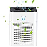 Purificador de aire para el hogar con filtro HEPA, ambientador ionizador USB,filtro de aire de iones negativos para humo de cigarrillo,bacterias,polvo,alergias,olores y caspa [Clase energética A +]