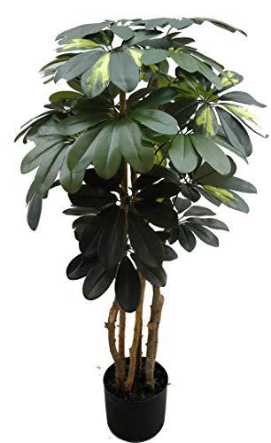 Seidenblumen Roß Schefflera 90cm grün/grün-gelb DA künstlicher Baum Kunstbaum Kunstpflanzen künstliche Pflanze