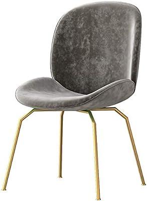 椅子ダイニングチェア、人間工学に基づいた背もたれ化粧椅子、モダンなレジャーサイドチェア、鉄の脚と高密度リバウンドスポンジ、カフェドレッシングルームキッチンオフィス