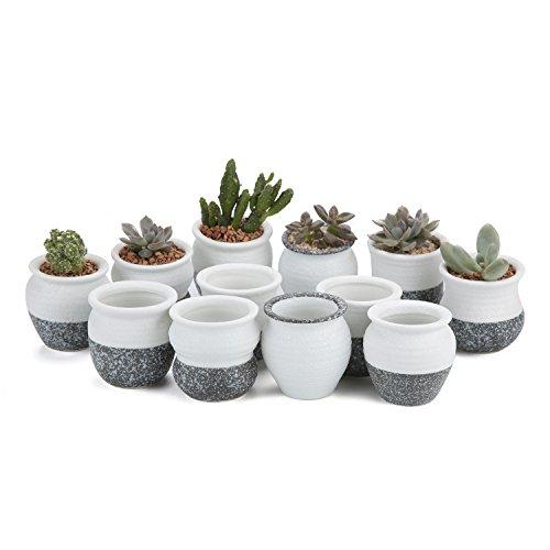 Snowflakes glazed porcelain pots
