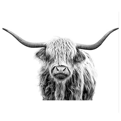 YLAXX Tier Digital Ölgemälde DIY Gemälde Aufklärung Fox Tier Festliche Geschenke Ölgemälde Acrylsäure Leinen Leinwand 40X50Cm