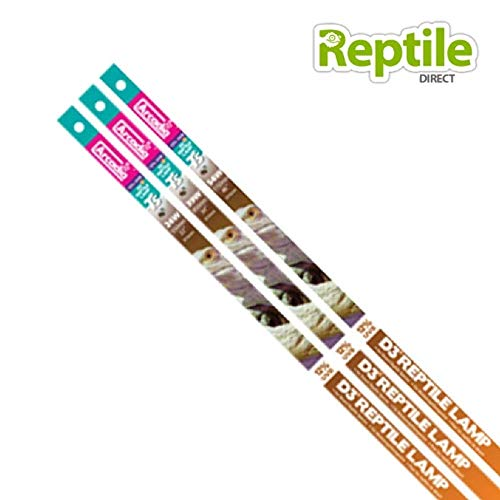 Ardacia FD3P24T5 D3 + Reptile Lampe T5, 24 watt