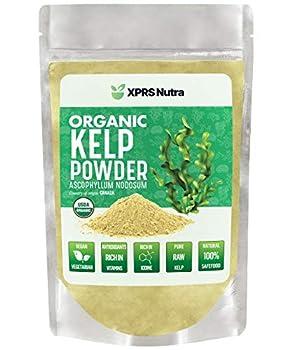 XPRS Nutra Organic Kelp Powder  Ascophyllum Nodosum  - Seaweed Powder Rich in Iodine Immune Vitamins and Minerals - Food Grade Sea Kelp Supplement Superfood for Thyroid Support Skin Health  4 oz