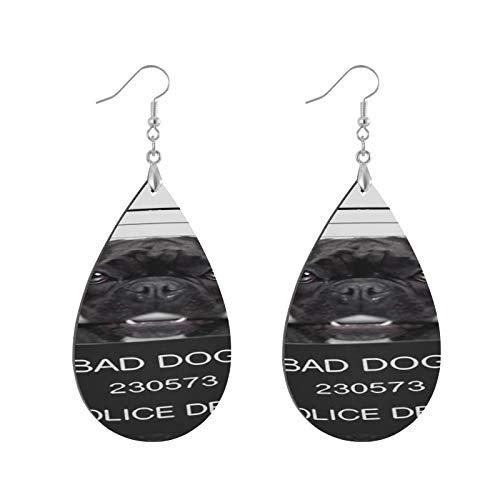 XHYYY Teardrop Wooden Earrings Drop Dangle Earings Lightweight Funny Cute French...