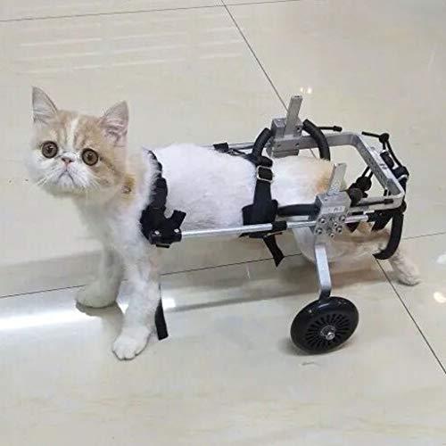 Extra Small Dog Rollstuhl, Rollstuhl Katze, Haustier Sport Einstellbare Hund Rollstuhl Wagenräder DREI Größen for Hinterbeine Rehabilitation (Size : M)