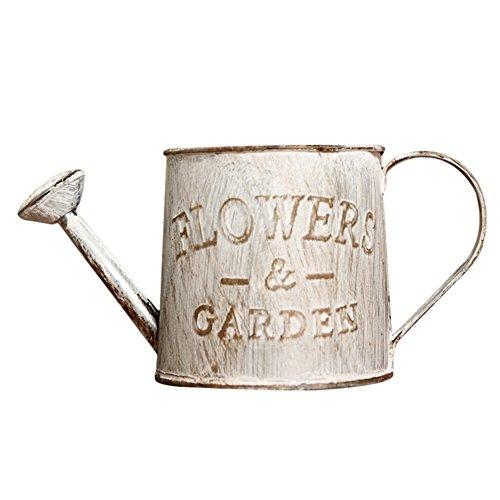 Lembeauty - Mini annaffiatoio artigianale in metallo, stile vintage, per fiori, piante, vasi, bonsai, piante grasse, per decorazione di casa, giardino, balcone