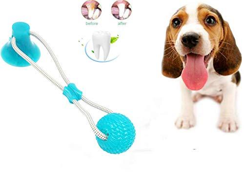 Nifogo Pet Molar Bite Toy,Juguete Multifuncional para mordedura de Molar Juguete con Ventosa Juguetes para morder para Perros Juguetes para Perros Molar para Mascotas (Verde,1 pcs)