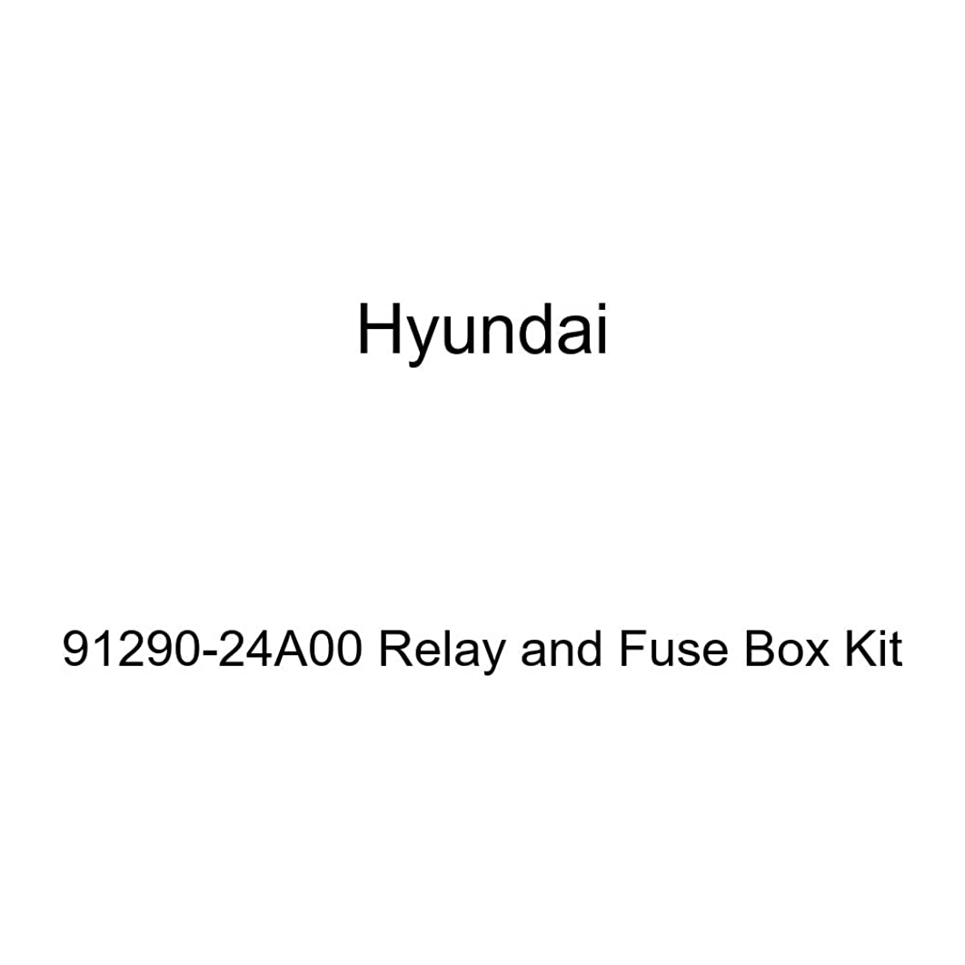 Genuine Hyundai 91290-24A00 Relay and Fuse Box Kit