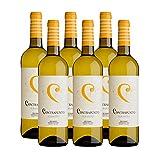 Vino Blanco Albariño Contrapunto de 75 cl - D.O. Rias Baixas - Bodegas Granbazan (Pack de 6 botellas)
