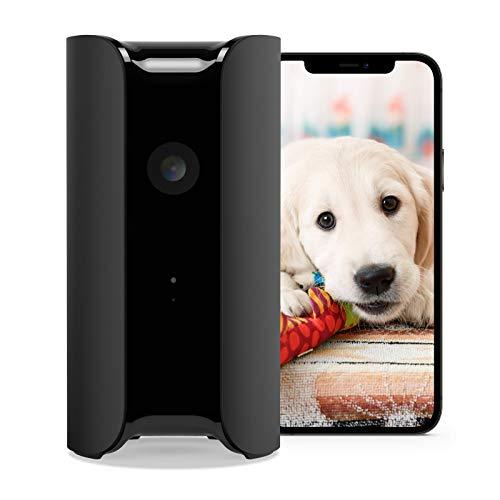 Canary View Überwachungskamera mit Premium Service (1 Jahr INKLUSIVE) | 1080p HD, 2-Wege-Audio, 30 Tage Video-Verlauf, Personenerkennung, Notruf-Option, Alexa, Google, Babyphone mit Kamera, IP WLAN