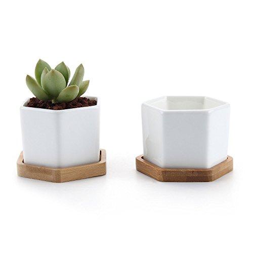 ComSaf 7CM Pot de Succulent en Céramique Hexagone avec Plateau en Bambou Blanc Lot de 2, Cactus Plante Planteur Cache Pot Jardinière Contenant